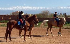 d0dd25e804ad57272e1c2f5cba440314_les-ecuries-de-marrakech_ecuries-de-marrakech